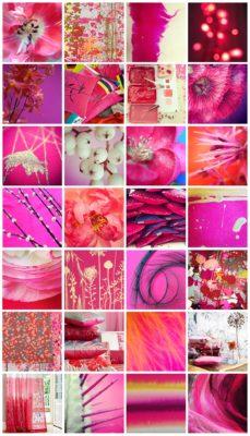 Pink Blog Grid