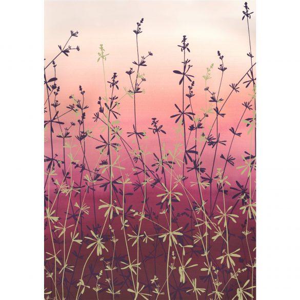 Giclée Print - Goose Grass