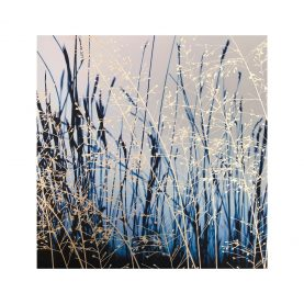 Greetings Card - Switch Grass