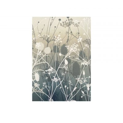Gift Wrap Set - Airy Meadow