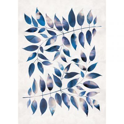 Giclée print - Ash Leaf