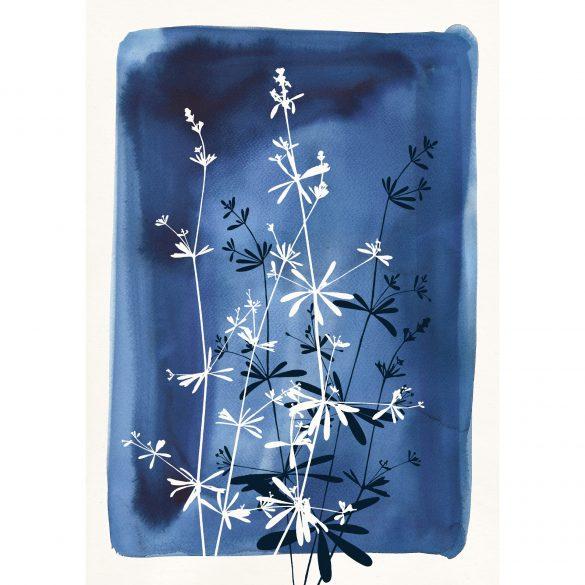 Giclée print - Goosegrass Watercolour