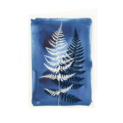 Pack of 6 Watercolour Cards